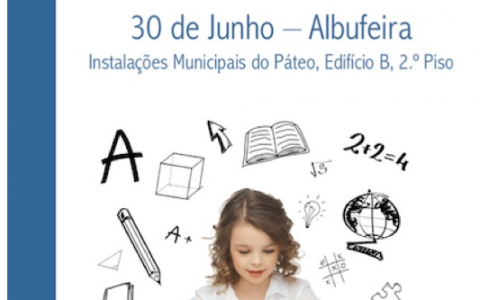 PIN-ED on the road: Special Education in practice and in the PIN´eyes